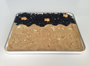 water: dried blueberries, fish crackers, sand: breadcrumbs, shells: sliced almonds