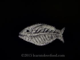 Xylitol X-ray fish