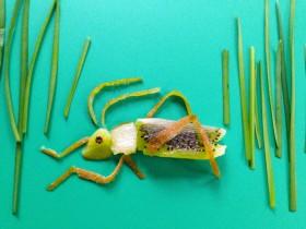 kiwi cricket