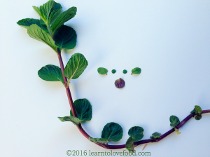 mint creature food art